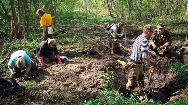 В Смоленской области нашли останки 21 бойца Красной армии