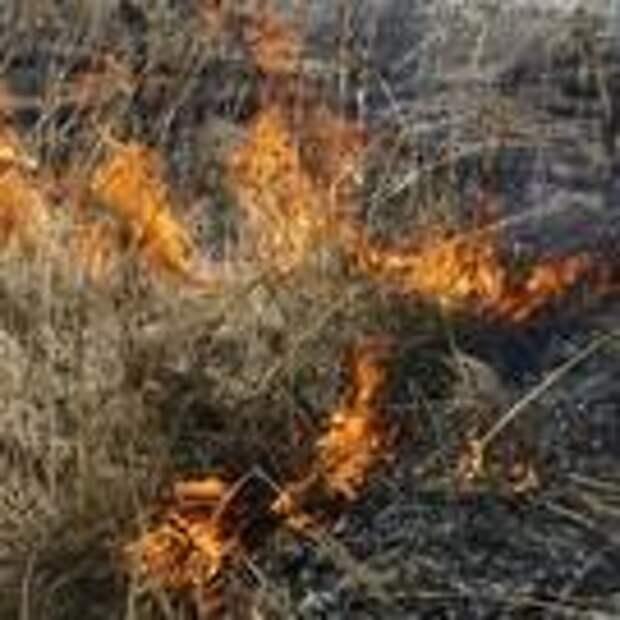 В Набережных Челнах резко выросло количество пожаров