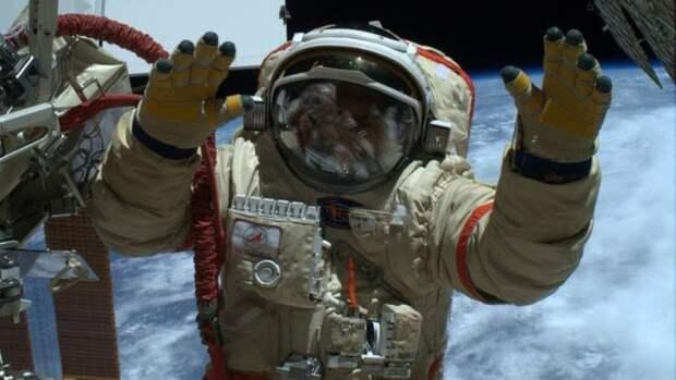 Ученые из РФ и США обсуждают вопрос удаления селезенки у космонавтов