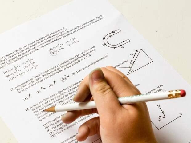Отказ от изучения математики негативно влияет на развитие мозга
