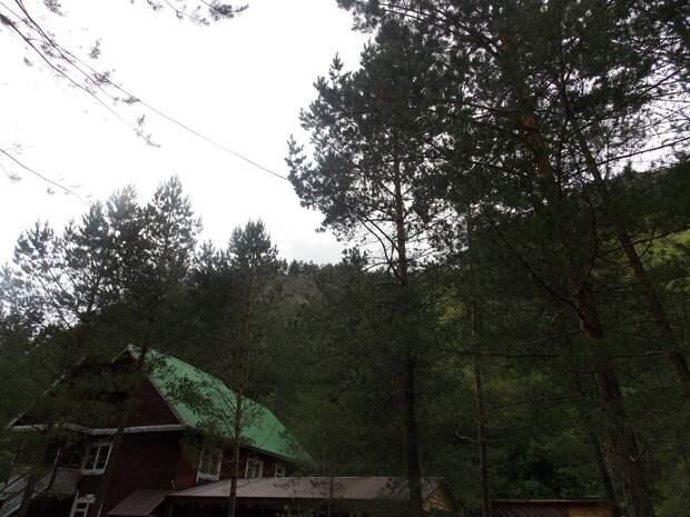 Томская Ока в Горном Алтае. Часть 6 (Таёжник)