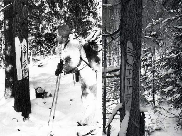 Исследователь Дегтерев на фото группы Дятлова разглядел загадочный силуэт за деревьями