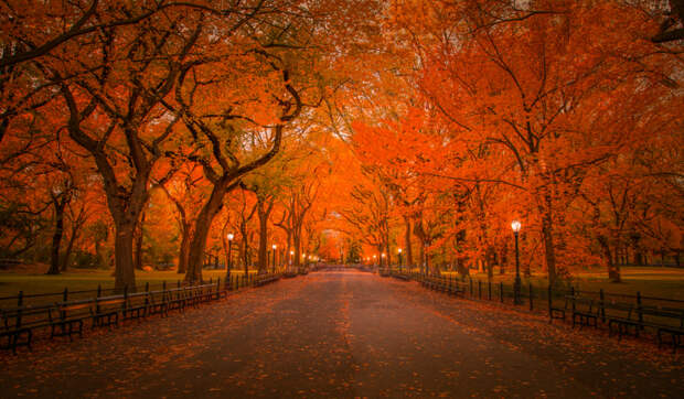 Autumn in Central Park, New York by John S on 500px.com