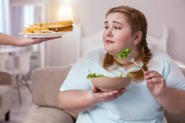 Переедание не вызывает ожирения, если знать что и когда кушать