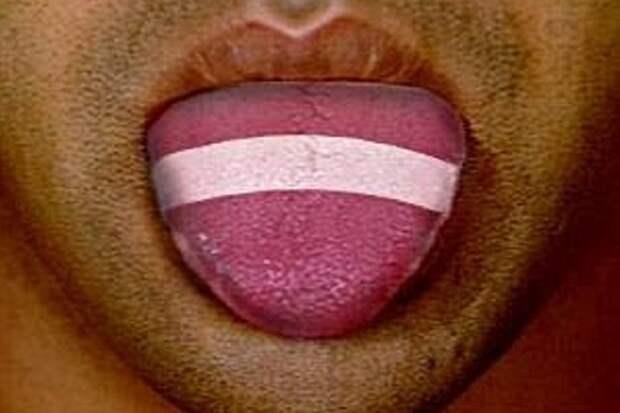 В Латвии признали – латышский язык исчезает из-за латышей