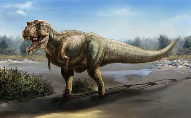 Палеонтологи из Нидерландов воссоздали походку тиранозавра и вычислили его скорость