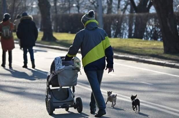 Минтруд предложил выплачивать материнский капитал отцам-одиночкам