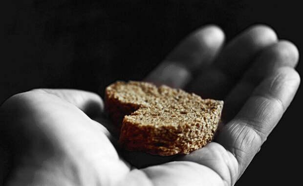 Вечерний рассказ. Черствый хлеб.