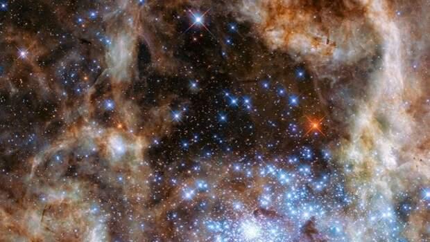 Астрономы узнали о главном условии для зарождения жизни во Вселенной