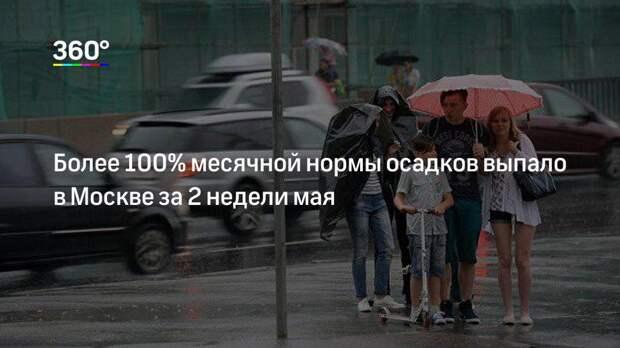 Более 100% месячной нормы осадков выпало в Москве за 2 недели мая