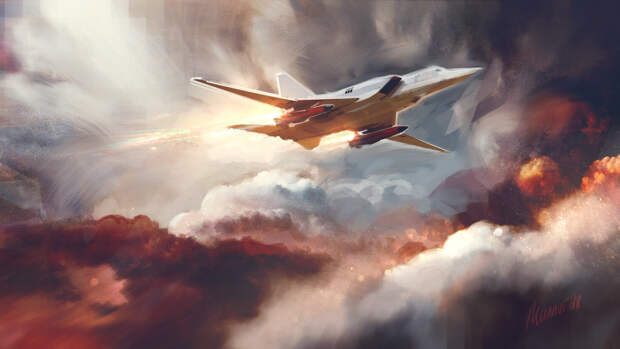 Sohu: попытка перехватить самолет ВКС РФ обернулась полным провалом ВМС США