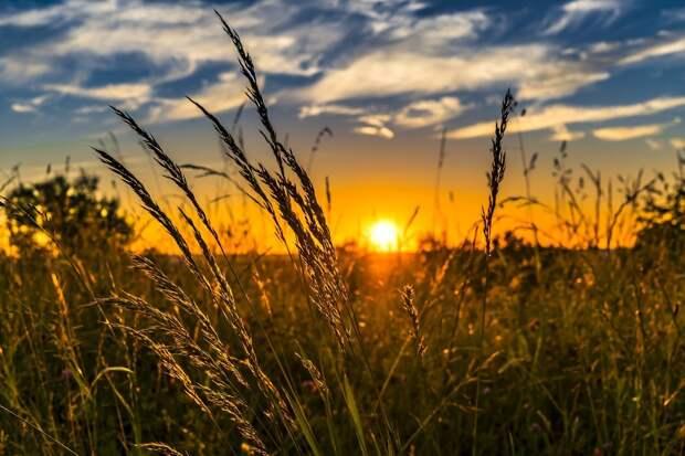 На пути к норме: в выходные в Удмуртию вернётся тепло