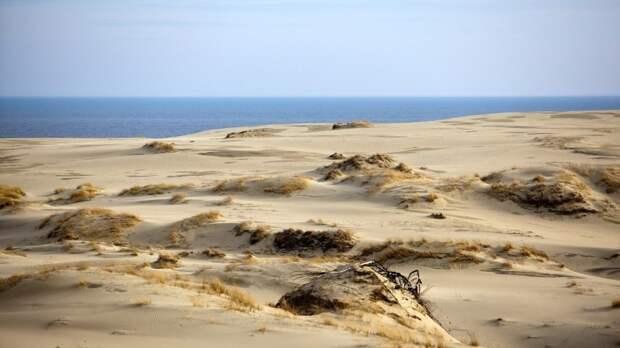 Экологи Украины сообщили о скором превращении страны в пустыню