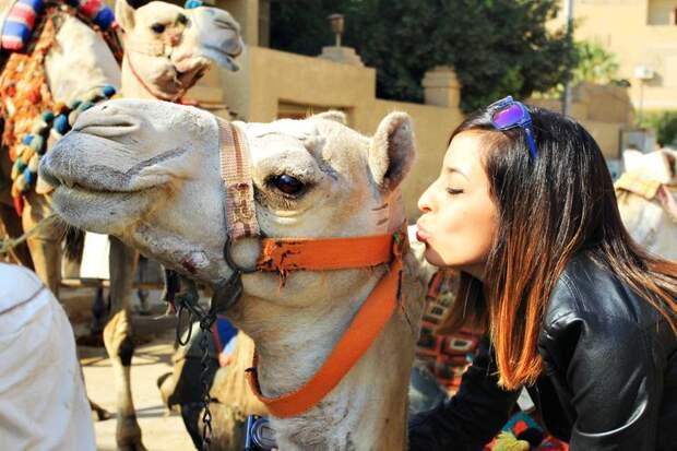 Неприятные сюрпризы, которые поджидают туристов в Таиланде, Египте и на Кипре