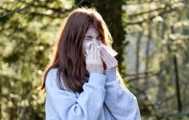 Аллергикам посоветовали эти выходные провести дома