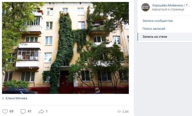 Виноградник на Генерала Карбышева будет ухожен — «Жилищник»