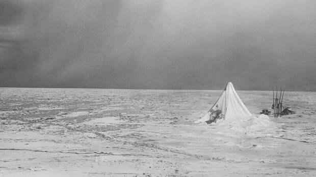 Трагедия гонки к Южному полюсу: Амундсен против Скотта Амундсен, антарктида, интересные истории, исторические факты, скотт, южный полюс