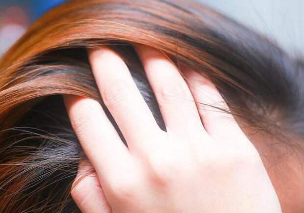 Как разбудить спящие луковицы волос на голове? Рецепты для густоты и роста волос