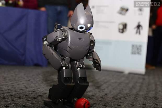 Этап международных соревнований по робототехнике пройдет в мае в Томске