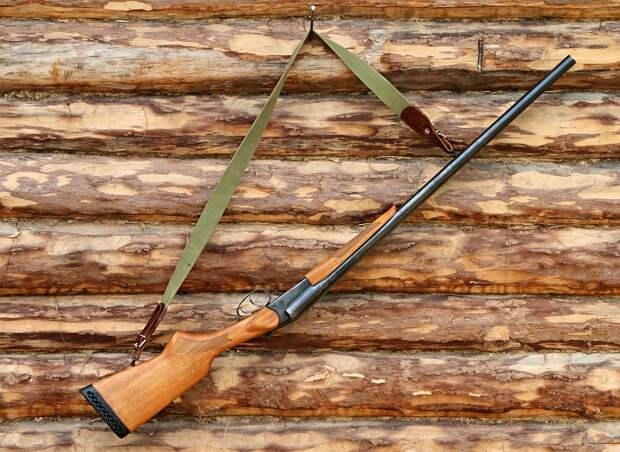 Охотники Удмуртии за секунду подали 254 заявления на получения разрешения на добычу кабана