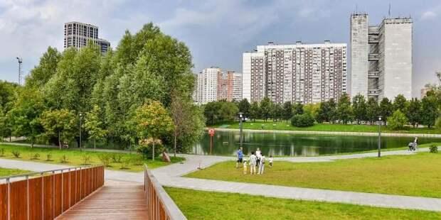 Собянин: в большинстве районов за пределами ТТК есть практически все для жизни и отдыха