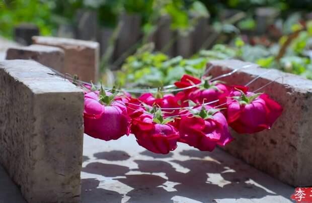 Видео: Как в Китае выращивают прекрасные розы и с чем потом их едят