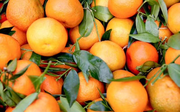 Оранжевое ДТП: по дороге рассыпались тысячи мандаринов