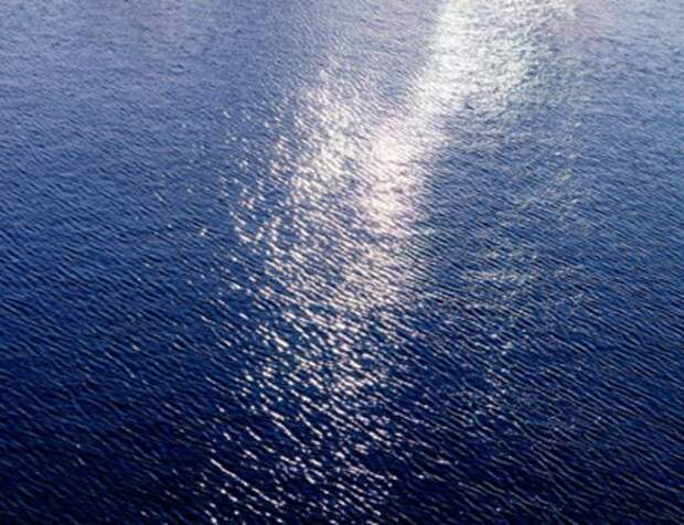 На Галапагосских островах обрушилась знаменитая Арка Дарвина (фото)