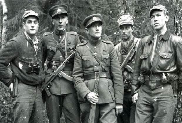 В каких странах Европы против Красной Армии воевали партизаны