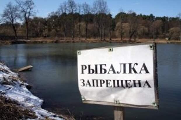В Вологодской области ввели ограничения на вылов рыбы