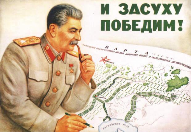 Последний удар Сталина. План преобразования природы