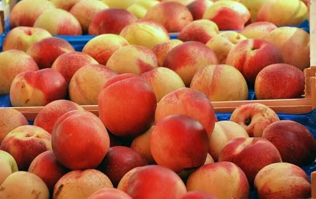 В Туапсе задержали зараженные персики и нектарины