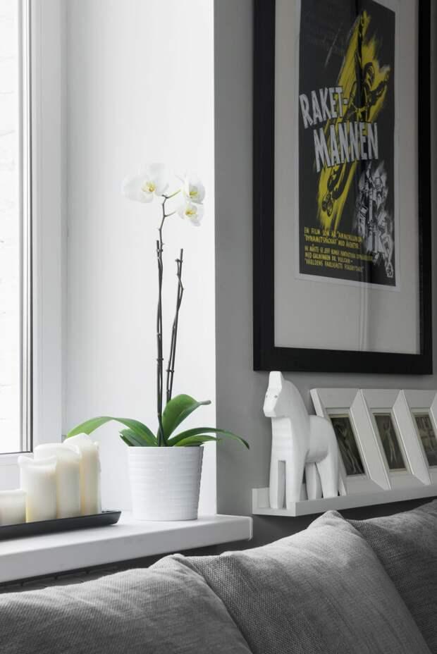 Однокомнатная хрущевка 30 кв.м. в серо-белых цветах