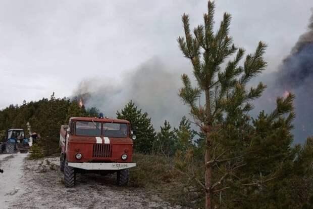 Пожар в нацпарке под Саратовом локализован