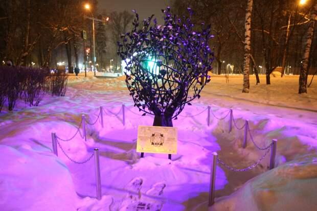 На Череповецком бульваре подсветили «чернобыльское» дерево