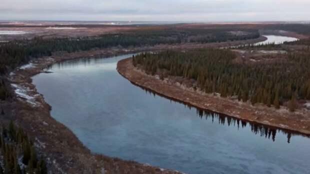 В ЛУКОЙЛе сообщили о ликвидации последствий разлива нефти на реке Колве