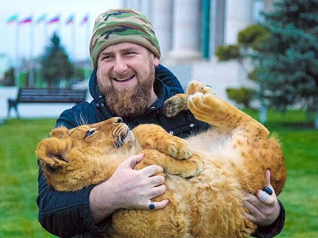 Почему Кадыров промахнулся