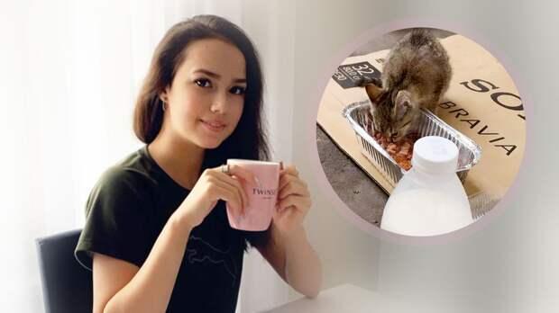 Загитова накормила бездомных котов: видео