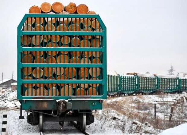 Нет вывозу леса: РФ введёт пошлину на экспорт