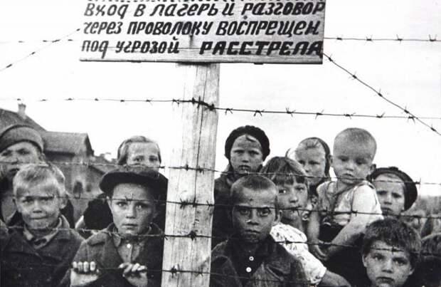 «Из страха перед русскими»: финны оправдались за концлагеря в Карелии