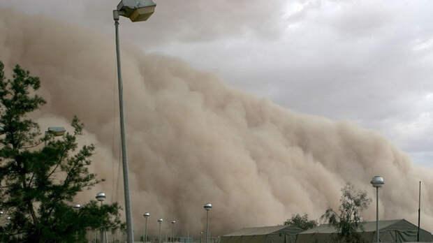 Пыльная буря накрыла трассу Бийск — Барнаул