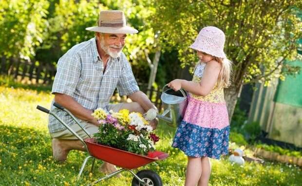 Полив - обязательная составляющая ухода за дачными растениями