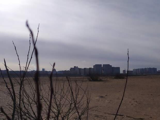 Петербуржцы потребовали запретить новые намывы в Финском заливе
