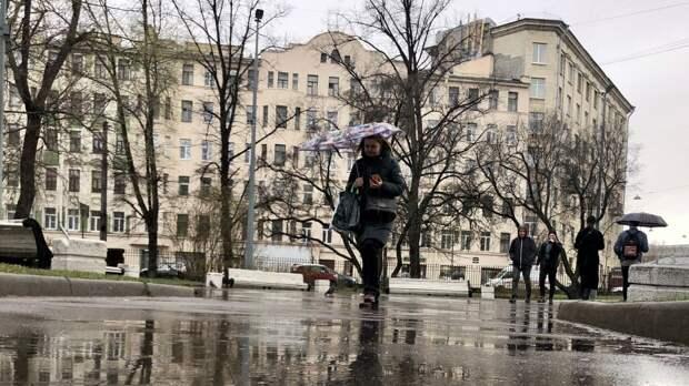 МЧС объявило штормовое предупреждение в Петербурге и Ленобласти