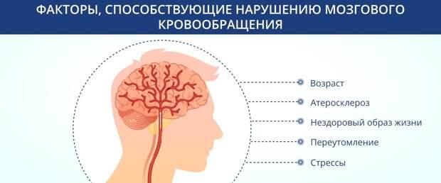 Факторы, способствующие нарушению мозгового кровообращения