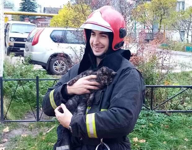 Немножко позитива. ВВитебске спасатель снял кота, который три дня сидел надереве, итот был очень благодарен