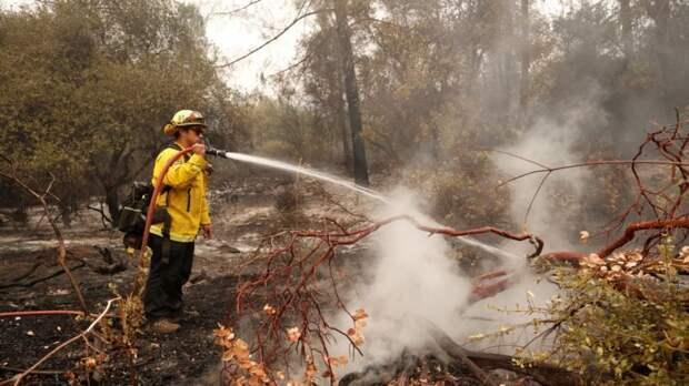 На западе США разыскивают погибших в результате пожаров