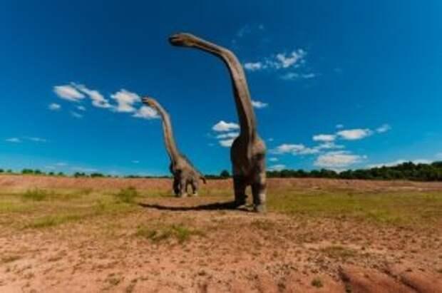 Моем грязную посуду и путешествуем с динозаврами