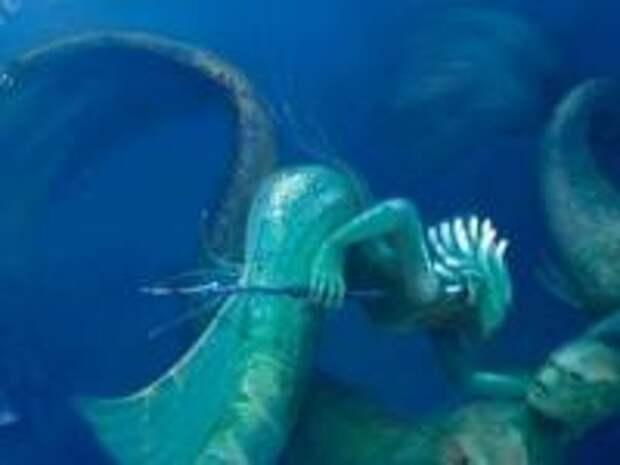 Когда мы жили в океане