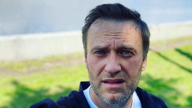 Политолог Карнаухов указал на связь главы NED с командой Навального